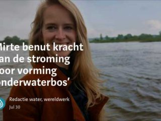 Article Water, Wereldwerk!