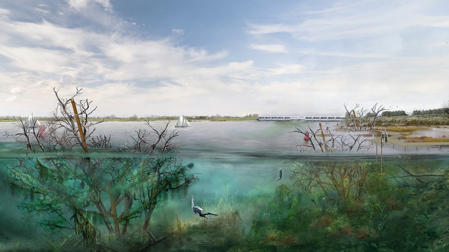 201224_Digitaal Onderwaterbos-2060