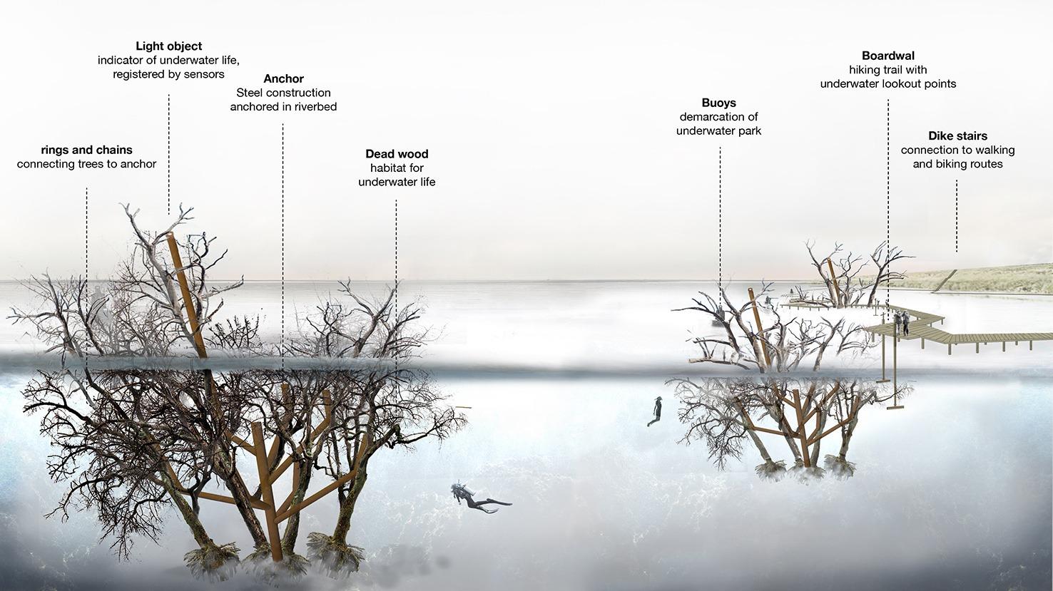 201224_Digitaal Onderwaterbos-2060_white-ENG